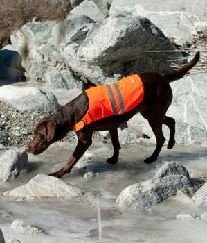 Cooling Safety Dog Vest - Orange