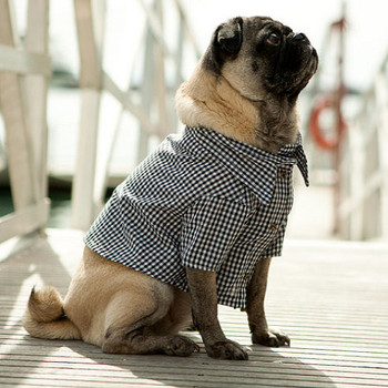 Port Black Gingham Dog Shirt