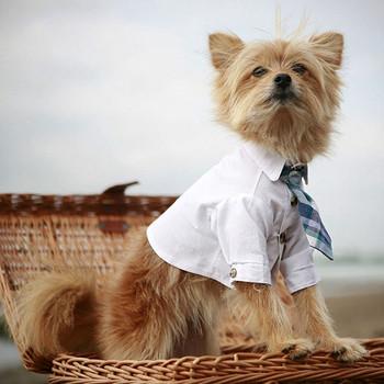 White Cotton Club Dog Shirt