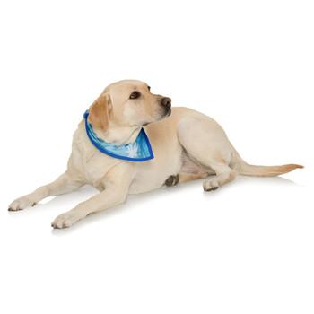 Dog Bandana - Palm Tree Blue / Royal