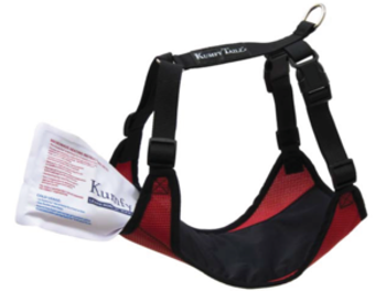 Cooling & Warming Dog Harness with Gel Pack