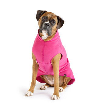 Gold Paw Stretch Fleece - Fuchsia