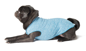 Sun Shield Pet Dog Tee - Ocean Blue Heather