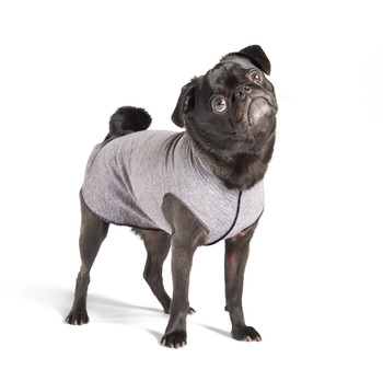 Sun Shield Pet Dog Tee - Grey Heather