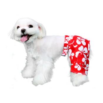 Okinawa Dog Swim Trunk or Board Shorts