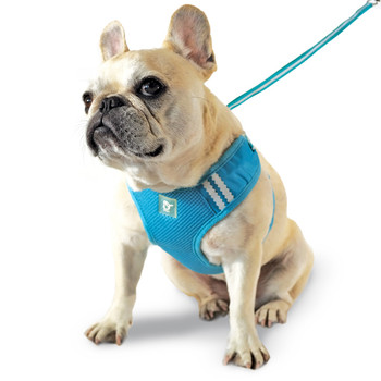 EasyGO Original Basic Dog Harness - PBY