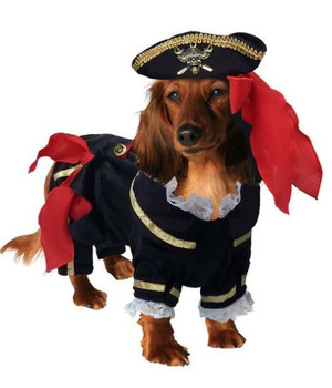 Buccaneer Pirate Pet Dog Costume