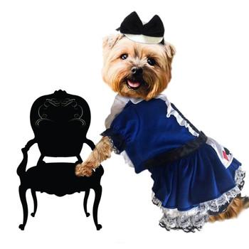 Alice Blue Pet Dog Costume