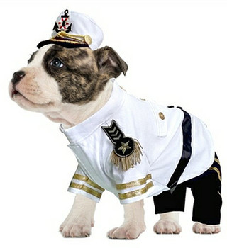 Admiral Pet Dog Costume