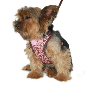 EasyGO Leopard Dog Harness