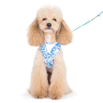 EasyGO Blue Hawaii Dog Harness