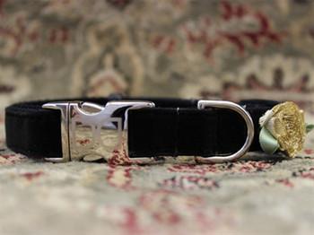 A Formal Affair Black Velvet Dog Collar - Personalized Buckle