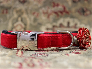 Mistletoe Holly Red Velvet Dog Collar - Personalized Buckle