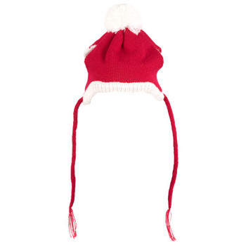 Christmas Santa Pet Dog Hat