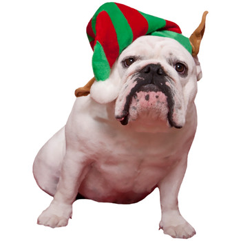 Elf Pet Dog Hat
