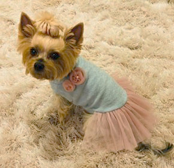 Designer Babyboomer Tutu Dog Dress