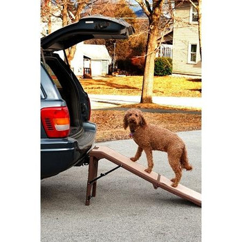 Free-Standing Pet Ramp