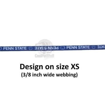 Penn State Nittany Lions Pet Nylon Collar - Large