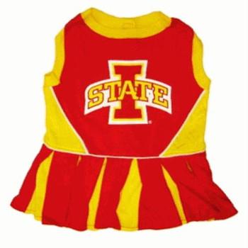 Iowa State Cheerleader Dog Dress
