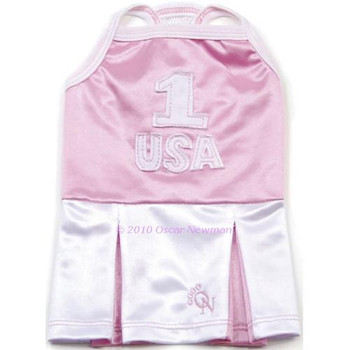 USA Sporty Chic Tank Dog Dress
