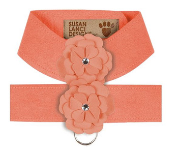 Design Your Own - Tinkie's Garden Dog Harness - Peaches n Cream