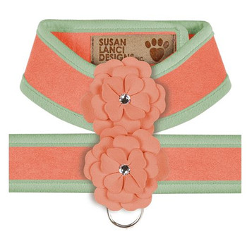 Design Your Own - Tinkie's Garden Dog Harness - Peaches n Cream