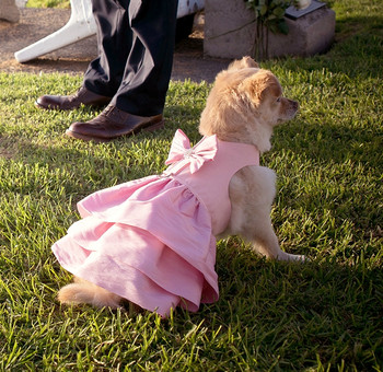 Puppy Pink Couture Designer Madison Dog Dress