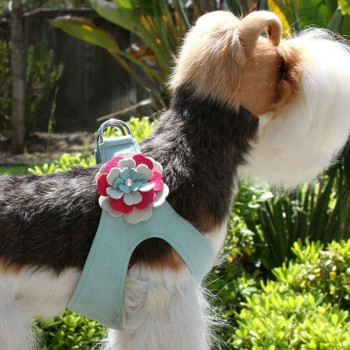 Blossom Flowers Dog Step In Harness