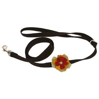 Autumn Flowers Dog Collar & optional Leash
