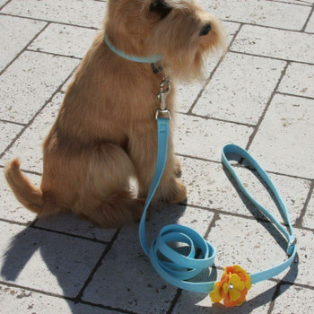 Darla Flowers Dog Collar & optional Leash