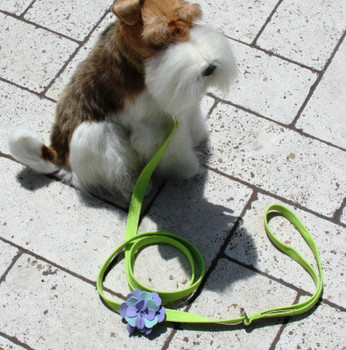 Emma Flowers Dog Collar & optional Leash