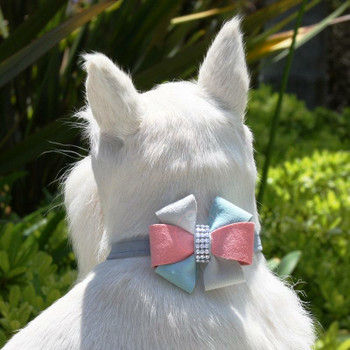 Julia Bow Dog Collar & optional Leash