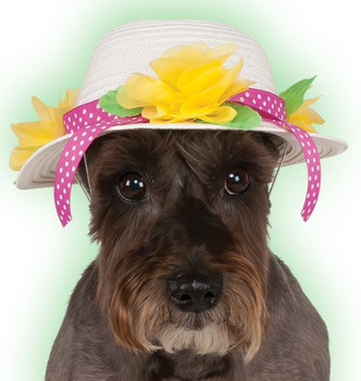 Kentucky Derby / Easter Hat for Pets