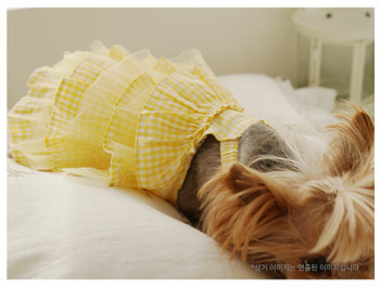 Yellow Bebe Check Cancan Dog Dress