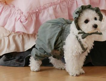 Ponchan Cotton Sleeveless Dog Overall / Pajama & optional Hat - Green