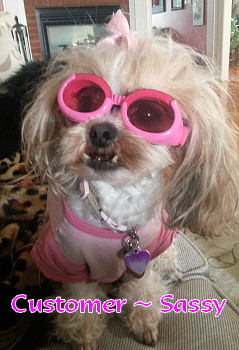 Pink w/ Sunset Mirror Lenses ILS Dog Sunglasses