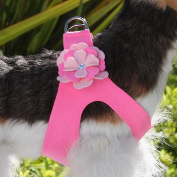 Alexandra Flowers Dog Step In Harness