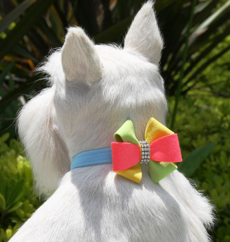 Angela Bow Dog Collar & optional Leash