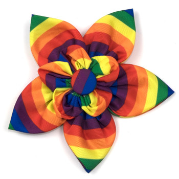 Rainbow Pet Dog Collar Flower