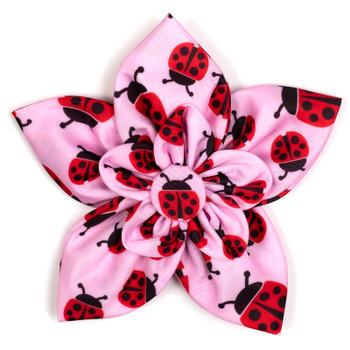 Ladybugs Pet Dog Collar Flower