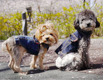 Geolgine Denim LOVE Dog Jacket - Blue