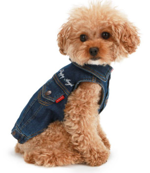 Puppy Angel Embroidered Denim Dog Jacket - Blue