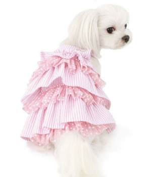 Puppy Angel Snow Flower Cancan Dog Dress - Pink