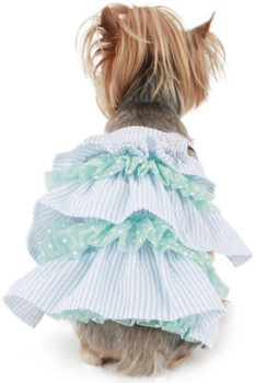 Puppy Angel Snow Flower Cancan Dog Dress - Blue
