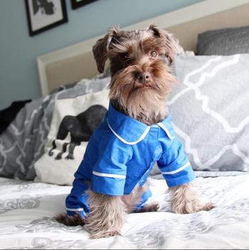 Blue Poplin Cotton Dog Pajamas