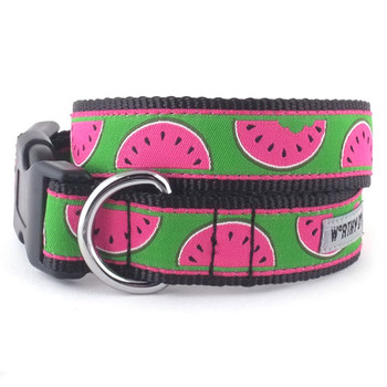 Watermelon Pet Dog Collar & Optional Lead Collection