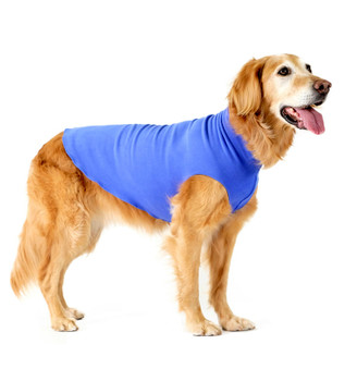 Gold Paw Stretch Fleece - Cornflower Blue
