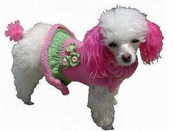 Girlie Girl Dog Sweater Dress - Hand Knitted