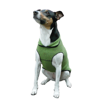 Pet Dog Gold Paw Eco Fleece - Leaf Green