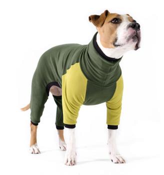 Pet Dog Onesie / Pajama - Hunter/Avocado